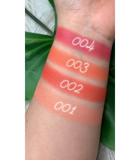 swatches colorete en polvo