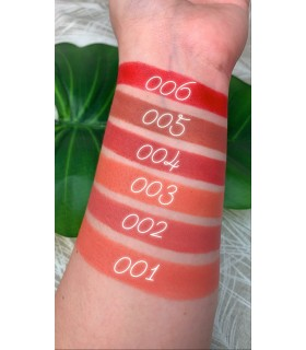 Swatches Lipstick Lovely Matte 24H